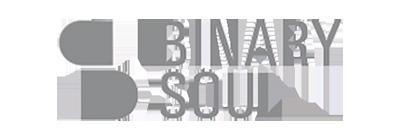 binary soul